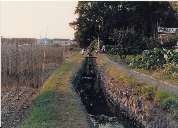 薬王寺堀 1987