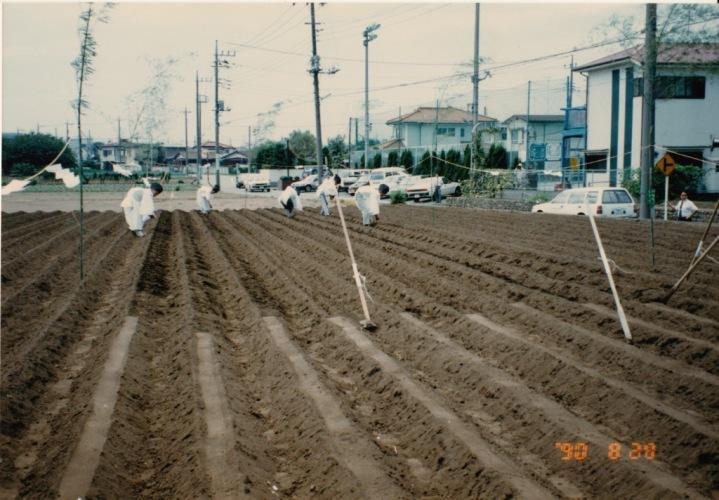 大嘗祭用奉納野菜の種まき 1990