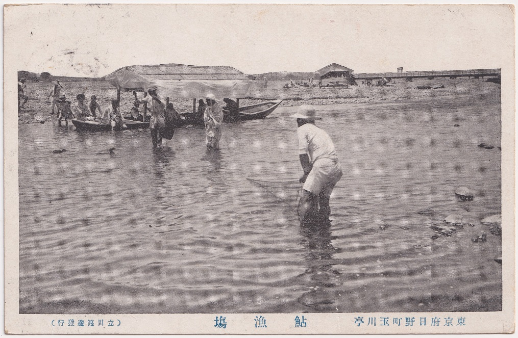 東京府日野町玉川亭鮎漁場(4)絵葉書 昭和初年