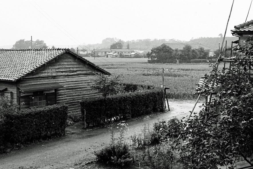 上屋敷付近から日野駅方面を望む 1955頃