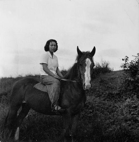 馬に乗る女性 昭和30年代