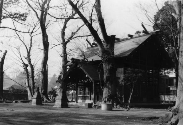 八坂神社 日野市郷土資料館提供